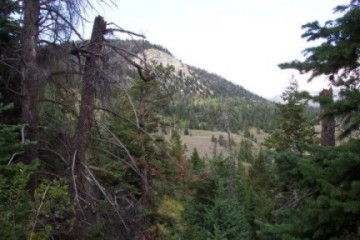 Colorado Hunting Photo 2
